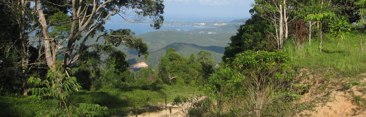 Maenam Viewpoint Trek - A short hike offering grand views over Samui!