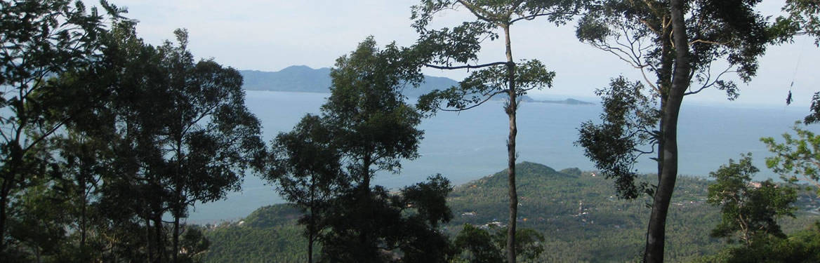 View over Koh Phangan