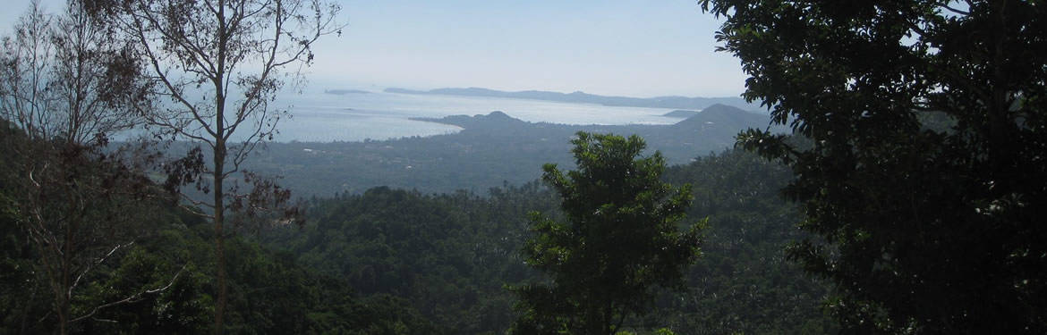 View over the north side of Samui